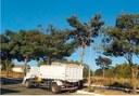 Cabo Fred Caixeta tem solicitação atendida pelo Executivo para realização de poda de árvores na Vila Jaiara