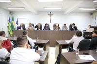 Comissão de Saúde debate medidas para ampliar atendimento de alta complexidade em Anápolis